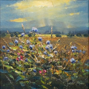 Wild Flowers, Carse Of Lecropt