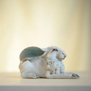 Small White Hare
