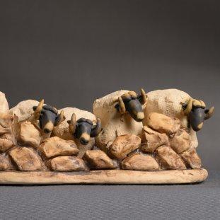 5 Herd