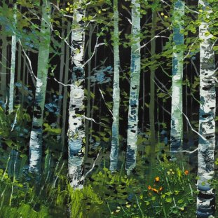 Silver Birches, Summer