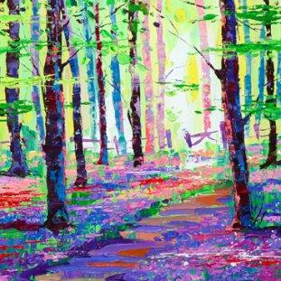 Light On Bluebell Woods