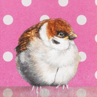Baby Bird – You're Gorgeous